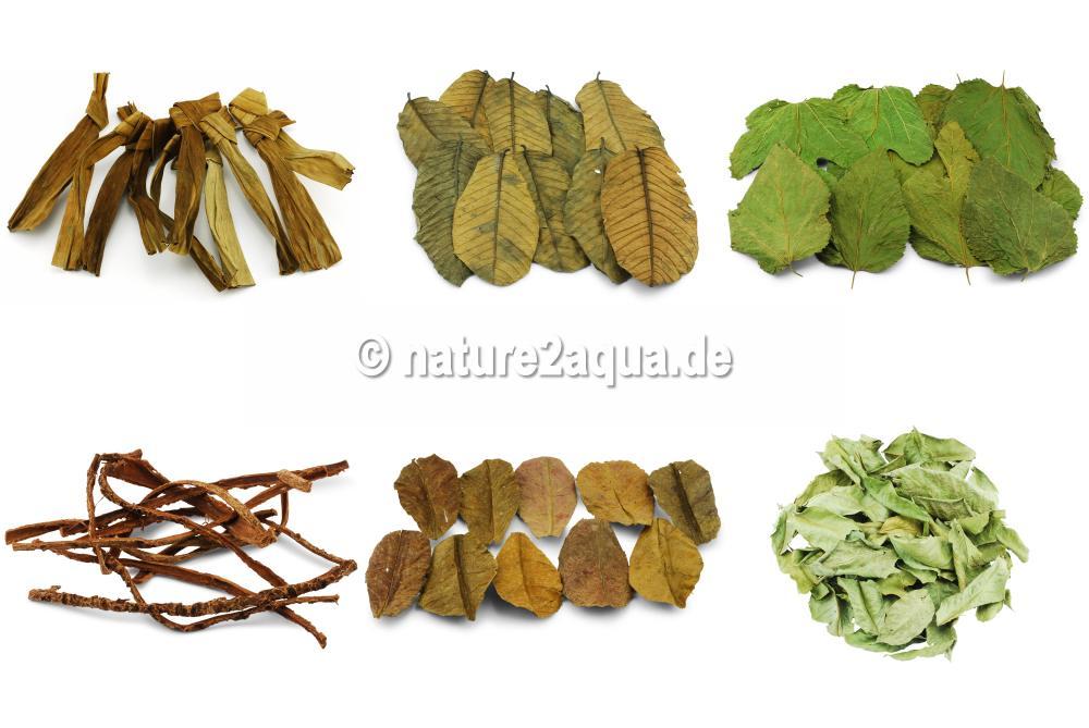 NATURDO - Blätter, Rinden & Moorkienholz