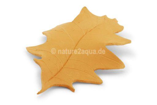 Roteichenblatt Ton mittelgroß terracotta