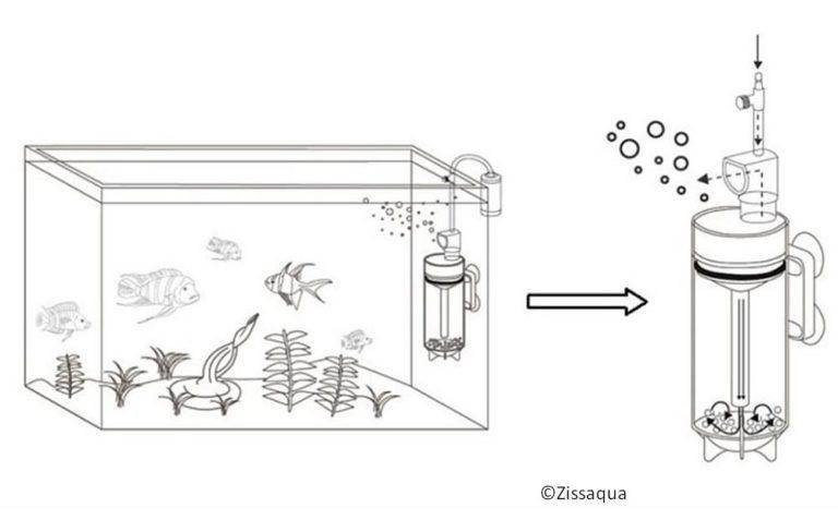 zeichnung ziss egg tumbler aquarium