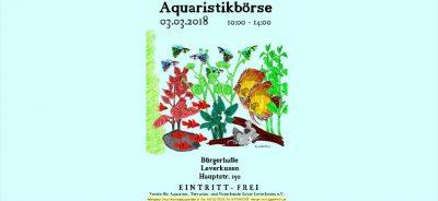 Börsenplakat Aquaristika 2017-03-03 Blogbeitrag
