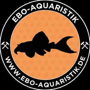 EBO-Fish feed