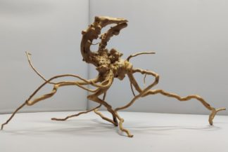 Spiderwood Aquarienwurzel Terrarienwurzel
