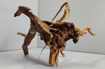 B1-2 Spiderwood