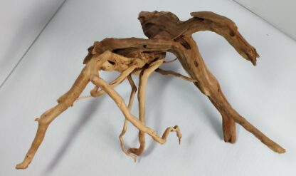 B1-3 Spiderwood