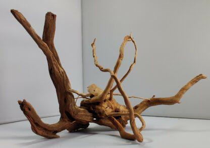 B1-4 Spiderwood