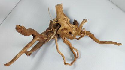 B1-5 Spiderwood
