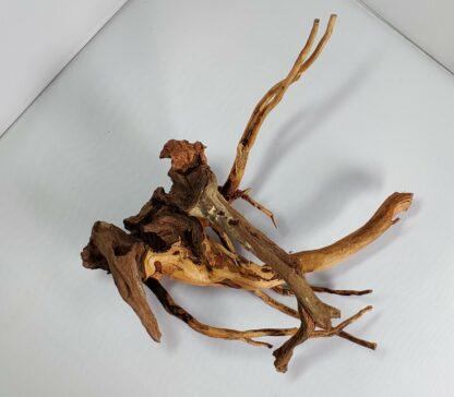 B16-2 Spiderwood