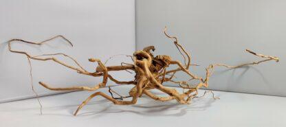 B17-2 Spiderwood