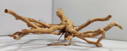 B3-1 Spiderwood
