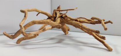 B3-5 Spiderwood