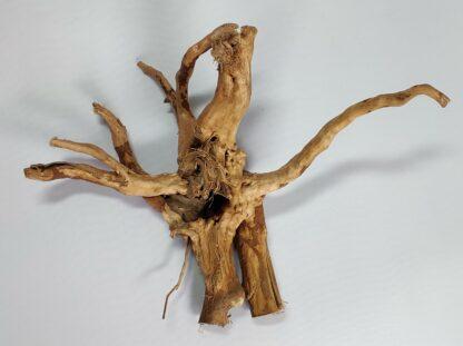B4-2 Spiderwood