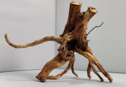 B4-3 Spiderwood