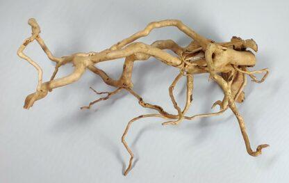 B5-2 Spiderwood