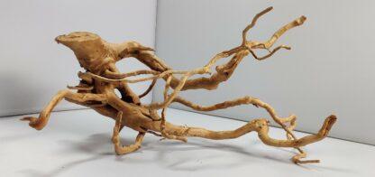 B5-4 Spiderwood