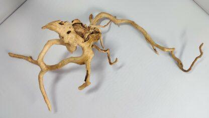 B7-3 Spiderwood