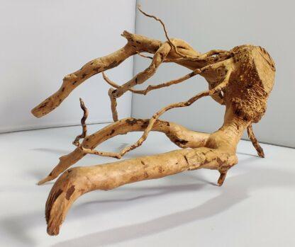 B8-2 Spiderwood