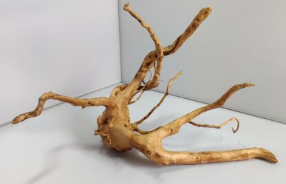 B8-4 Spiderwood