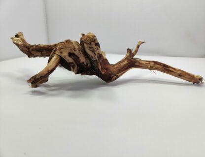 Teawood Wurzel für Aquarium