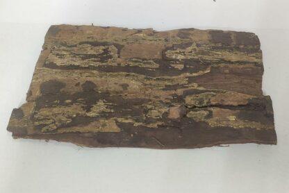 Seemandelbaumrindenplatte Aquarium