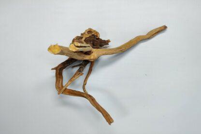 Spiderwood Wurzel für Aquarium Aquarienwurzel